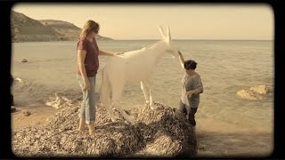 The Making of the Happy Donkey