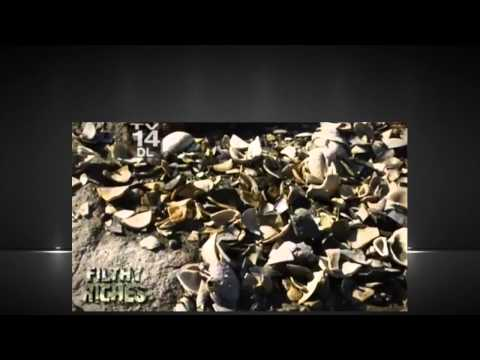 Filthy Riches Season 2 Episode 1 – Bloodworms, Eels & Gators Full Episode