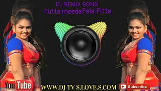 New  Telugu  latest  remix  DJ song Putta meeda Pala pitta DJ remix www.DJ TV S.LOVE.S.COM