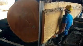 Amazing Fastest Large Wood Sawmill Machines Working - Extreme Fast Wood Cutting Machine