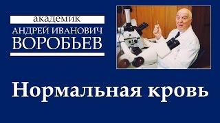 Нормальная кровь Раздел 1(, 2015-03-17T07:17:24.000Z)