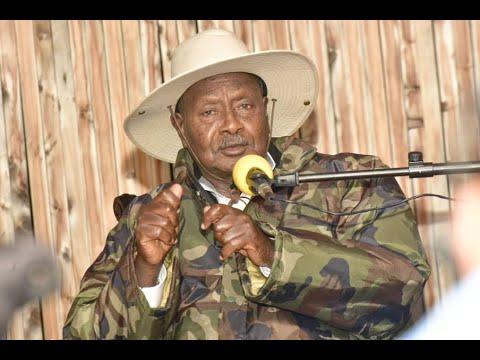"""Uganda blockiert Facebook – """"Sie sollten nicht bestimmen, wer in unserem Land nicht gehört werden kann"""""""
