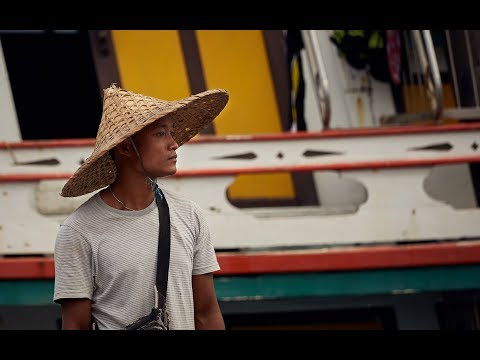 Sustainability: Digital Traceability In Thailand's Fishing Industry