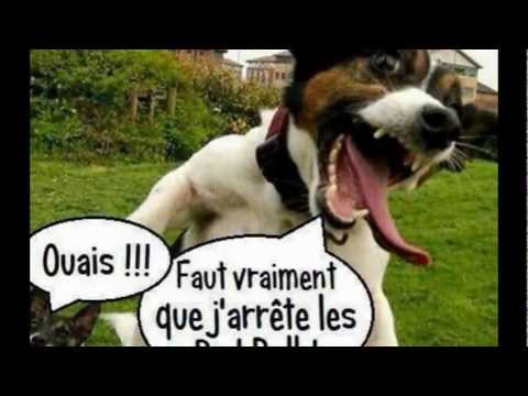 humour decalé sur facebook : ma page - YouTube