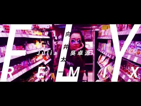 FLY (remix) - 向井太一 ╳ Julia 吳卓源