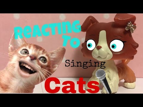 LPS reacting to: Singing Cats (read DESC)