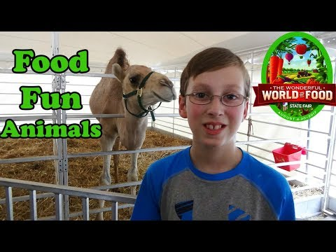 INDIANA STATE FAIR 2017 VLOG | FOOD, FUN, GAMES, AND ANIMALS | COLLINTV
