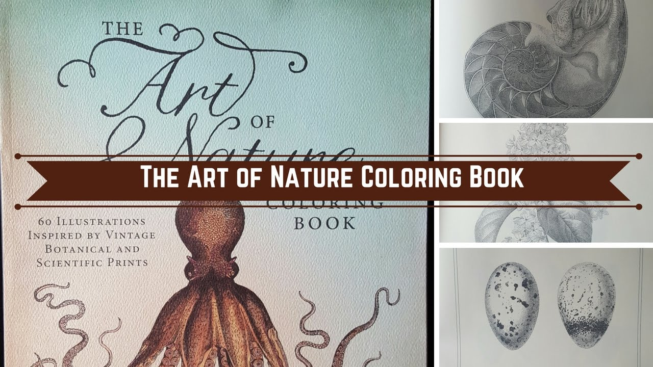 The Art of Nature Coloring Book - YouTube