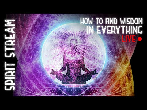 How to Find Wisdom in Everything! ~ Spirit Stream