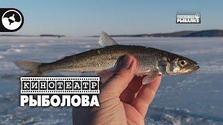 Зимняя рыбалка Корюшка дальневосточная Кинотеатр рыболова