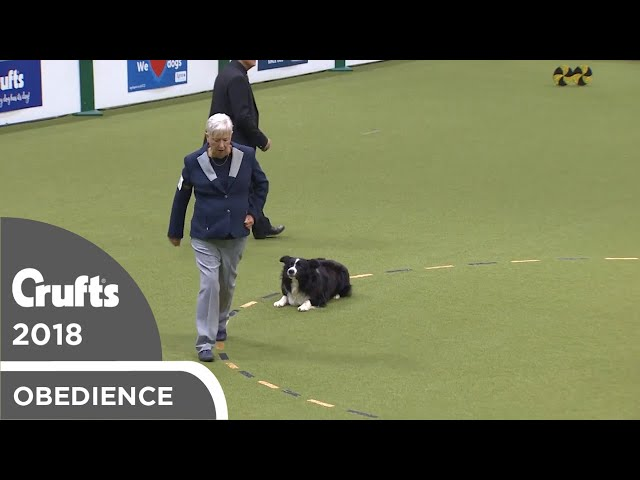 Obedience - Dog Championship - Part 19 | Crufts 2018