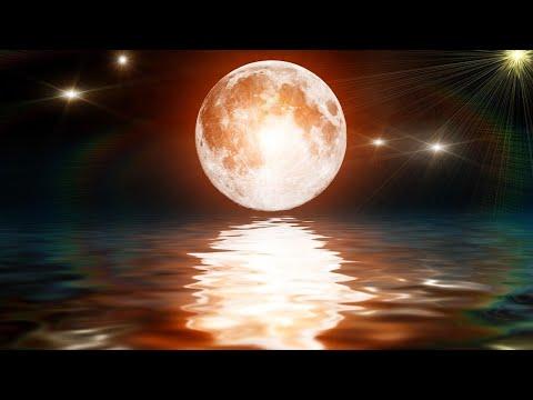 Sleep Music 24/7, Calm Music, Relaxing Music, Sleep Meditation, Yoga, Zen Music, Study Music, Sleep