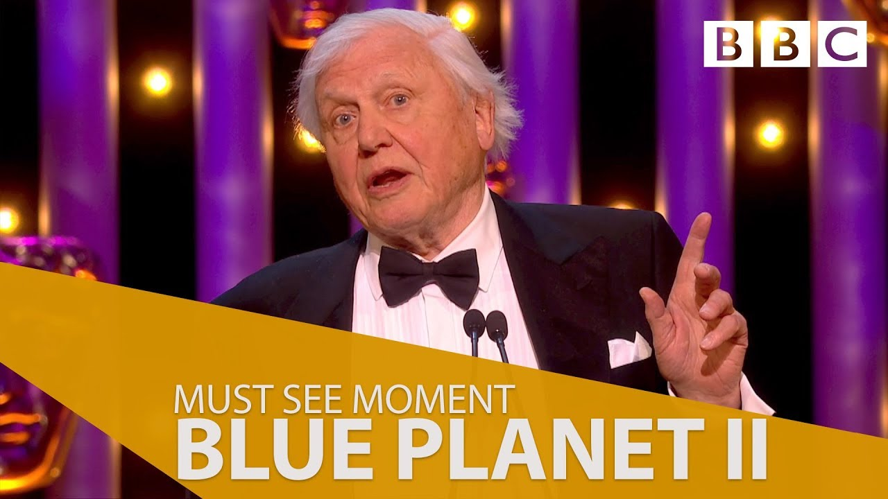 Blue Planet Ii Wins Must See Moment At The British Academy Television Awards 2018