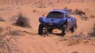 vuclip Team Saluki - Testing the new buggy