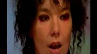 Björk - 2002 Interview (Vespertine era)