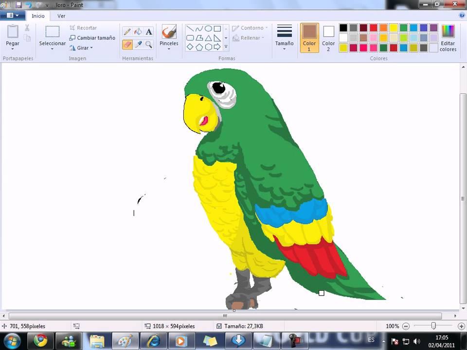 Dibujando Loro (parte 5)