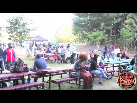 Atlanta's Reggae In The Park 2014