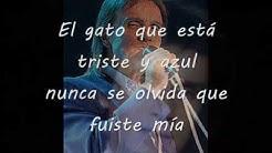 Roberto Carlos El Gato que Está Triste y Azul 1972 Con letra