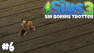 The Sims 3 - Sir Borris Junior [6]