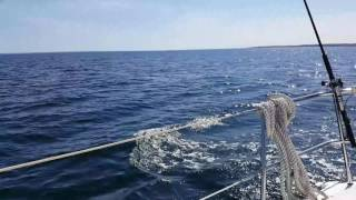 Video Sailing Bavaria 32 cruiser download MP3, 3GP, MP4, WEBM, AVI, FLV Juni 2018