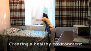 Maid Service in Hillsborough, Pinellas County.  Cleaning your house. Maids in Oldsmar Palm Harbor.