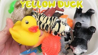 Learn Colors with Zoo Animals and Farm Animals Surprise Toy for Kid