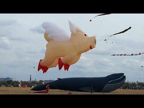 شاهد: براعة التحكم في طائرات ورقية عملاقة في مهرجان برلين…  - نشر قبل 5 ساعة