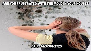 Mold Remediation Baltimore - 443-961-2725 - Mold Removal Balti…