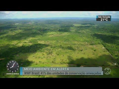 Quase 40% das áreas de conservação na Amazônia estão ameaçadas | SBT Brasil (11/08/18)