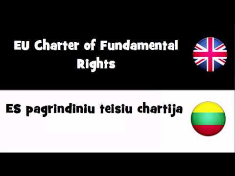 TRANSLATE IN 20 LANGUAGES = EU Charter of Fundamental Rights