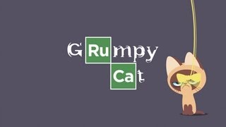 #BreakingBad #GrumpyCat