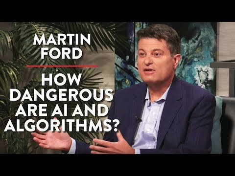 How Dangerous are AI and Algorithms? | Martin Ford | Rubin Report