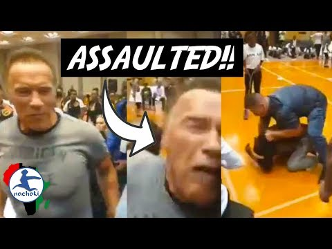 Arnold Schwarzenegger Attacked at South Africa Event Explained
