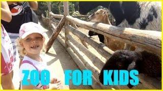 Зоопарк Бердянск Видео для Детей про Животных Ищем Капибару Zoo Videos For Kids Animals Feed part#1(Сегодня посетили зоопарк Сафари в Бердянске. Отличный зоопарк для детей. Очень много животных, их можно..., 2016-08-14T09:30:01.000Z)