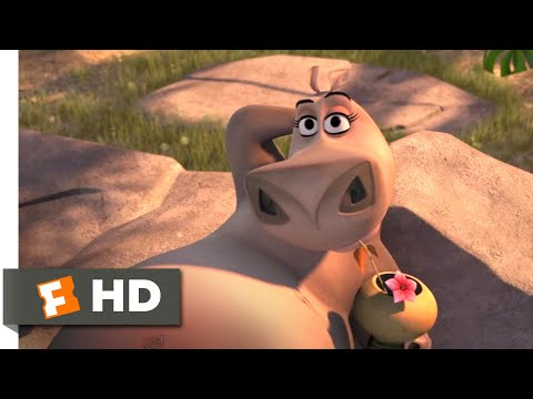 Madagascar: Escape 2 Africa (2008) - Moto Moto Likes You Scene (4/10) | Movieclips