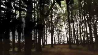 Aeurtum - Of Ebony Branches & Bone OFFICIAL LYRIC VIDEO HD