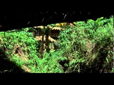 Portés Disparus 2: Pourquoi ? - [Film] - 1985de YouTube · Durée:  1 heure 31 minutes 38 secondes