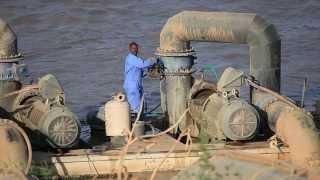 مشروع الكفاءة الزراعي السودان الراجحي الزراعية