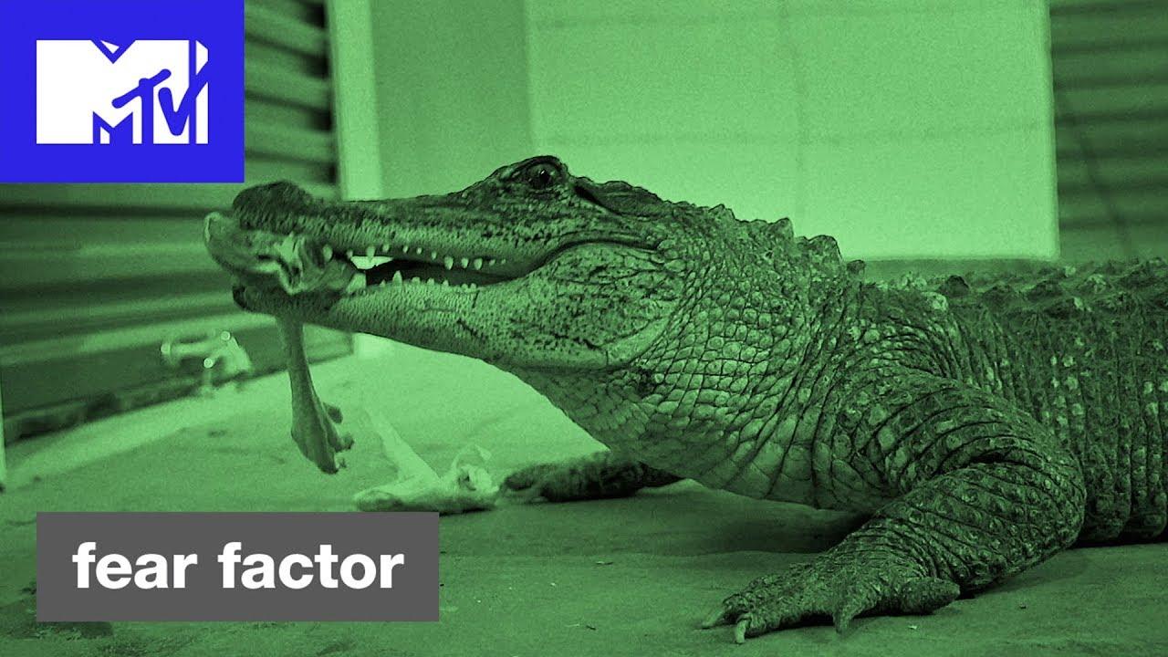 Download 'Feeding Time' Official Sneak Peek | Fear Factor Hosted by Ludacris | MTV