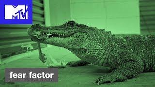 'Feeding Time' Official Sneak Peek | Fear Factor Hosted by Ludacris | MTV