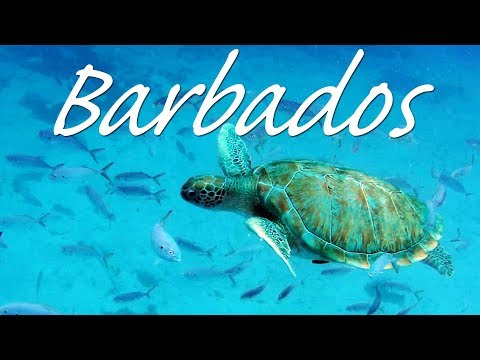 AMAZING BARBADOS - a GoPro travel video