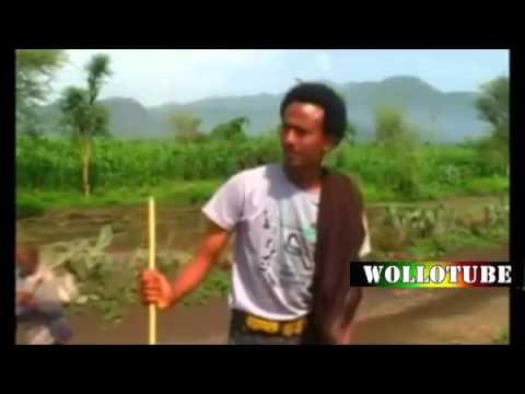 (WolloTube Ethiopian Music) Melaku Negus: Afalgugn
