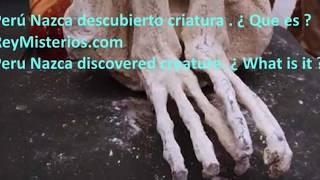 Perú Meseta de Nazca criatura de tres dedos