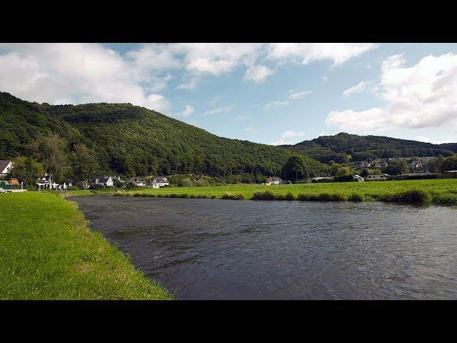 Über den Wipfeln - Unterwegs im Vorderen Westerwald | Fahr mal hin | SWR Fernsehen