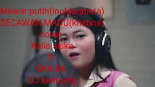 DJ KENTRUNG FULL ALBUM KALIA SISKA FT SKA 86