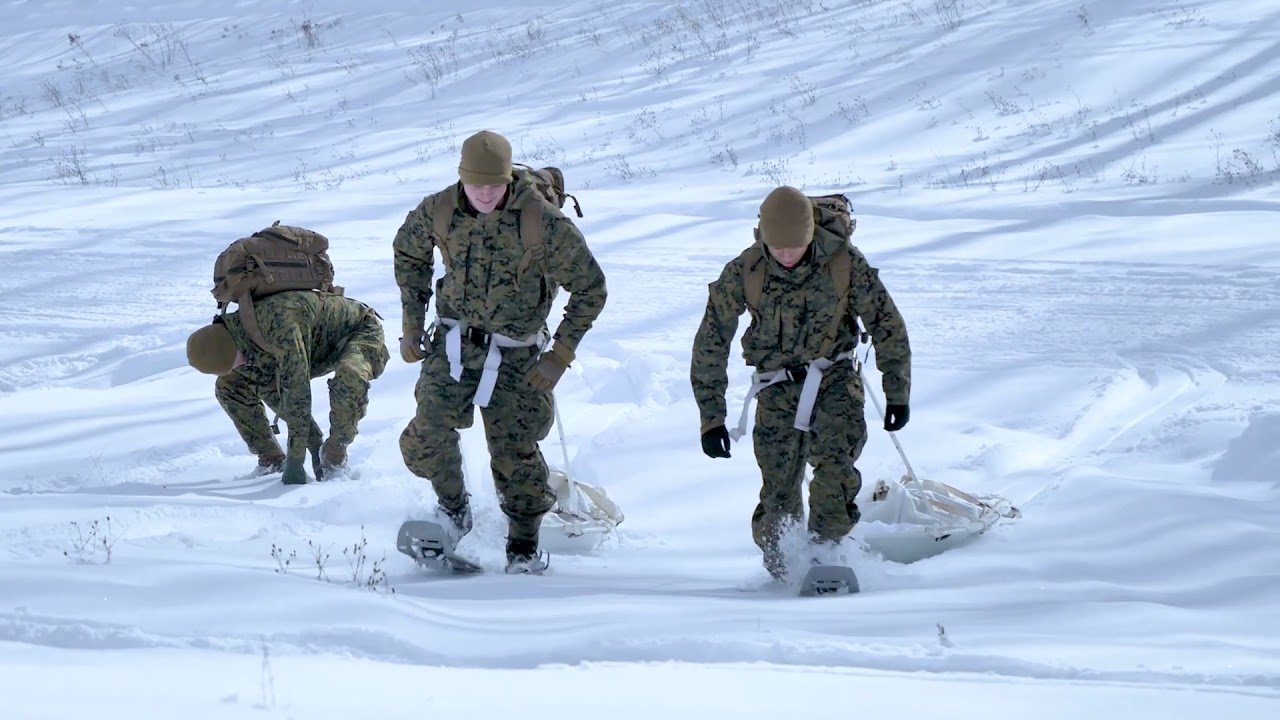 US Military News • U.S. Marines • Extreme Arctic Environment Training • Exercise Northern Strike