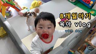 육아 브이로그] 엄마가 촬영한 8개월 아들과 반려견 (…