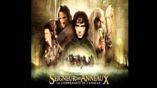 Le Seigneur des Anneaux - The Ring Goes South (11)