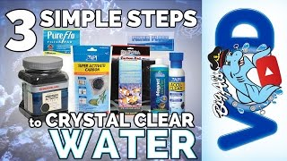 3 Simple Steps for Crystal Clear Water | Big Al's