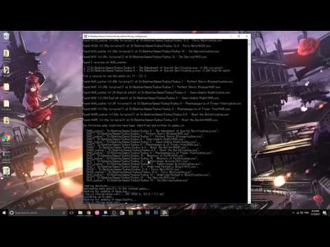 [Tutorial] Setting up VSync Patch for Touhou Games (Read Description)
